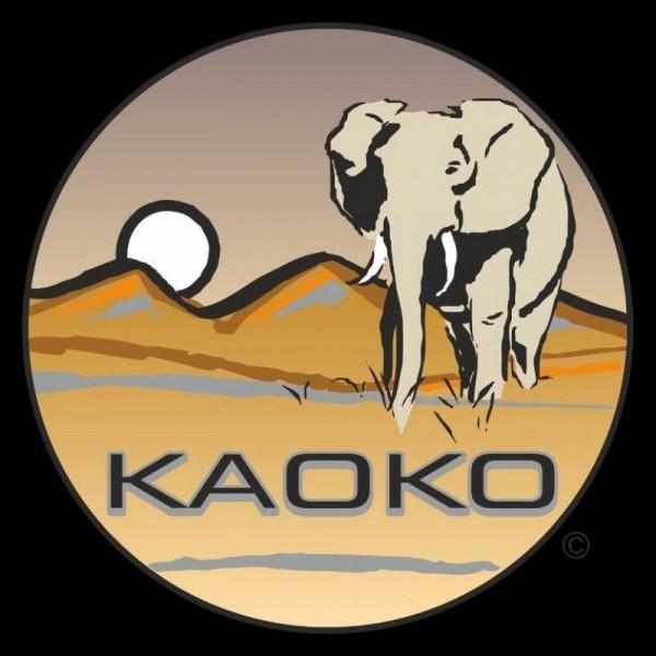 """Kaoko Gasgriff-Arretierung """"Drive Control"""" für BUELL XB12X/XT/S/R für Rizoma"""